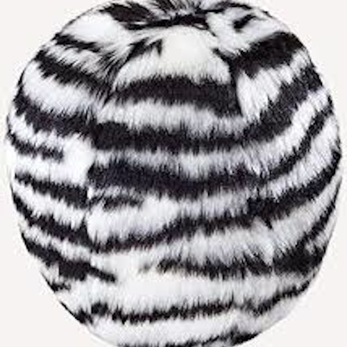 Zebra Ball Dog Toy