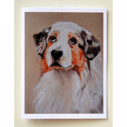 Australian Shepherd Notecards