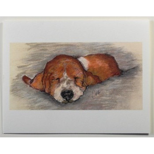 Basset Hound Notecards