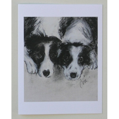 Border Collie Notecards