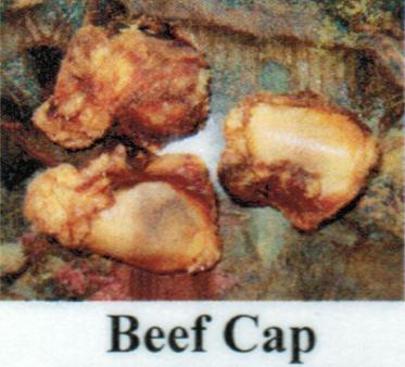 Pet Deli Case of Beef Caps