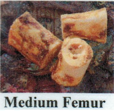 Pet Deli Case of Beef Femurs (Medium)