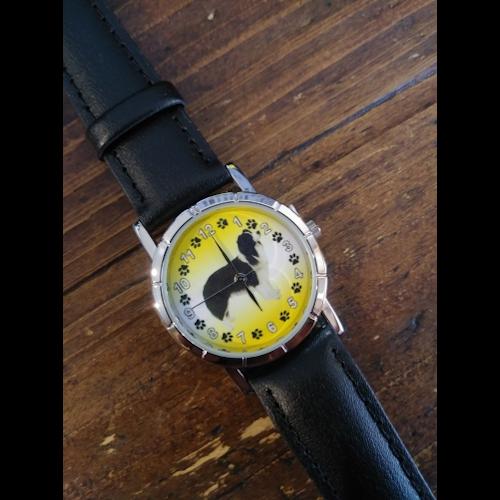 Border Collie Watch