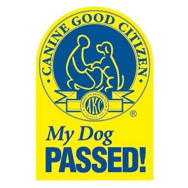 CGC Passed!