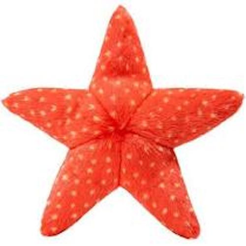 Ziggy Starfish Dog Toy