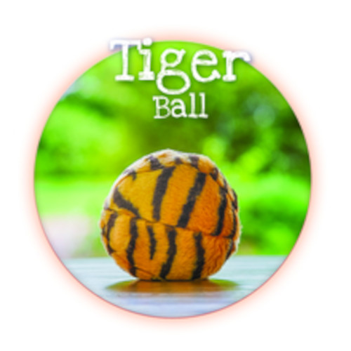 Tiger Ball Dog Toy